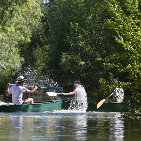 Things to do in the Marais Poitevin