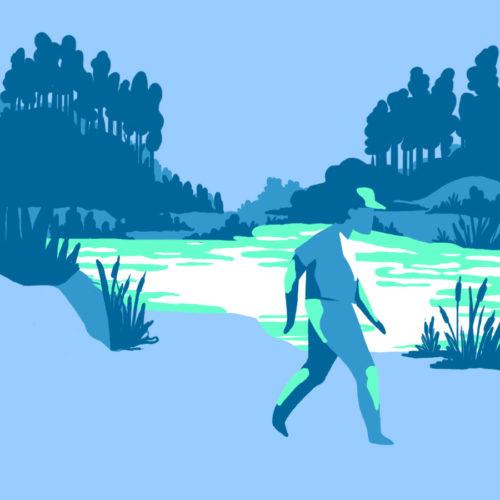 Illustration des étangs de Touvérac