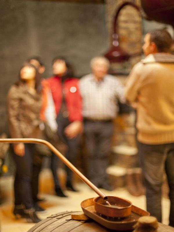 visit of a Cognac distillery