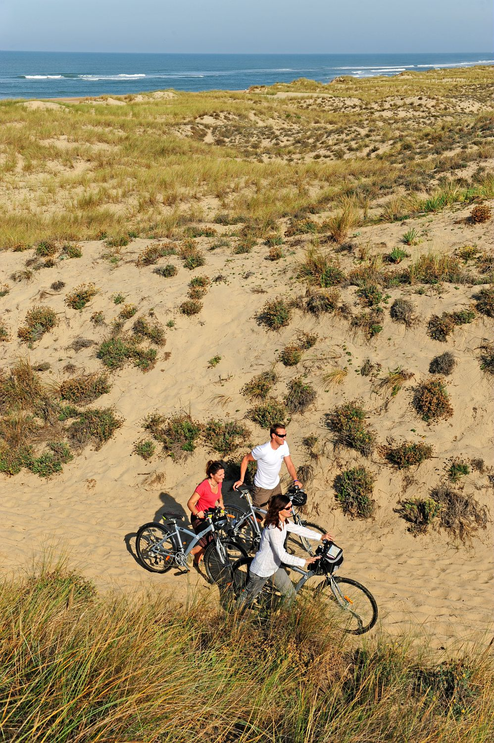 Cycling holidays in family on the French Atlantic Coast